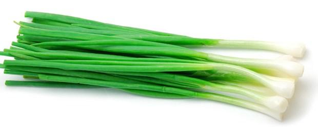 yeşil-soğan.jpg