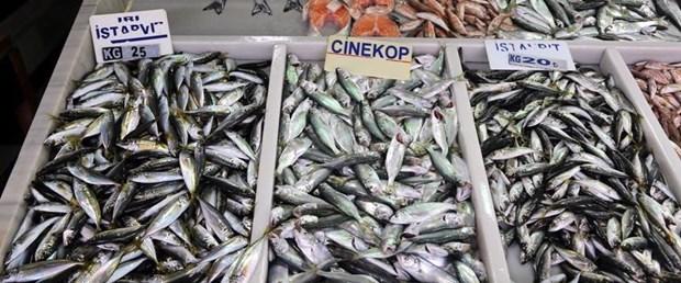 balık tüketim kişi başı221218.jpg