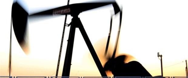 Birol: Petrol 100 doların altına inmez