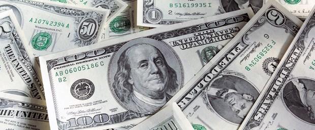 dolar101.jpg