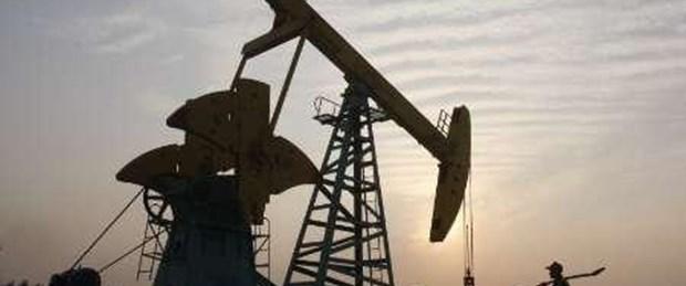 Hani'de petrol bulundu