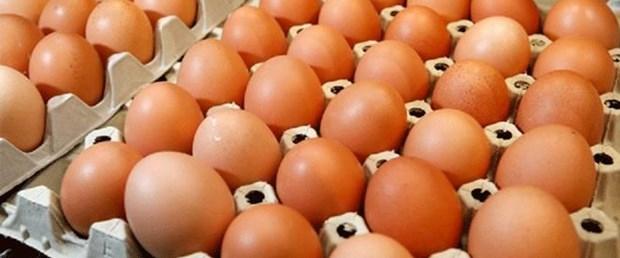 Yumurta iha.jpg