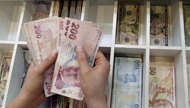 para türk lirası TL.JPG