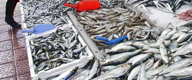 balık-fiyatları.jpg