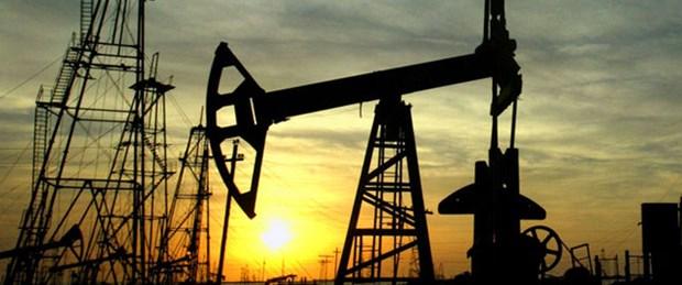 Petrol zenginlerinin parası Türkiye'ye