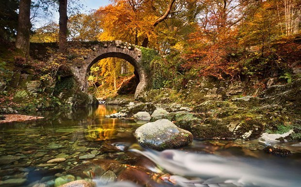 13. İRLANDA