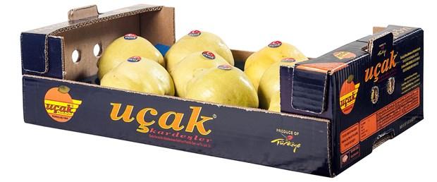 rusyaya-ucak-logolu-limon-krizi.jpg