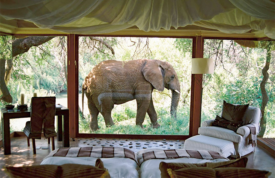 Güney Afrika