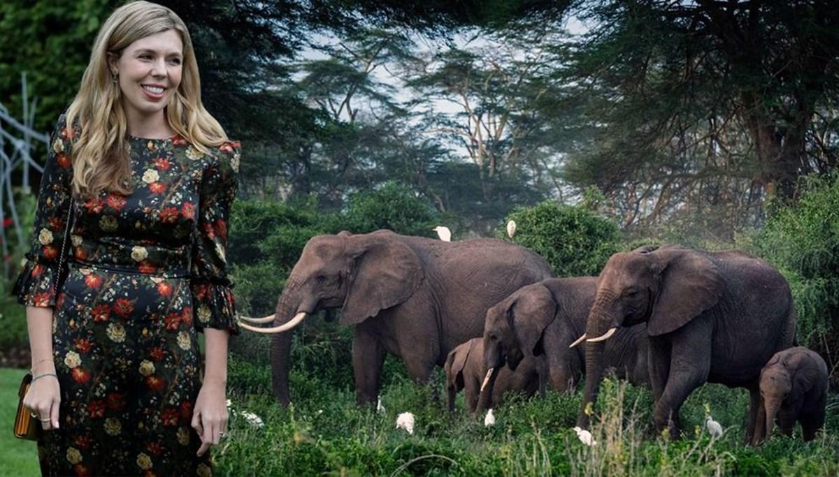 Carrie Johnson filleri kurtaracak