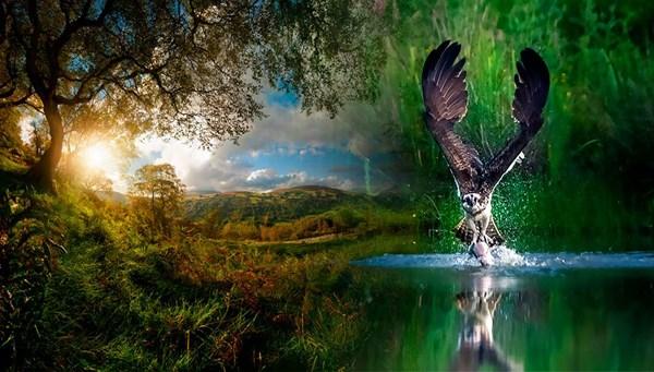 Doğadan ilham alanlar: Milli Parklar Fotoğraf Yarışması 2020