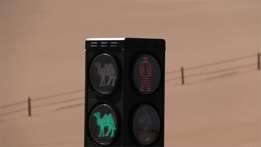 Develere özel trafik lambası - 2