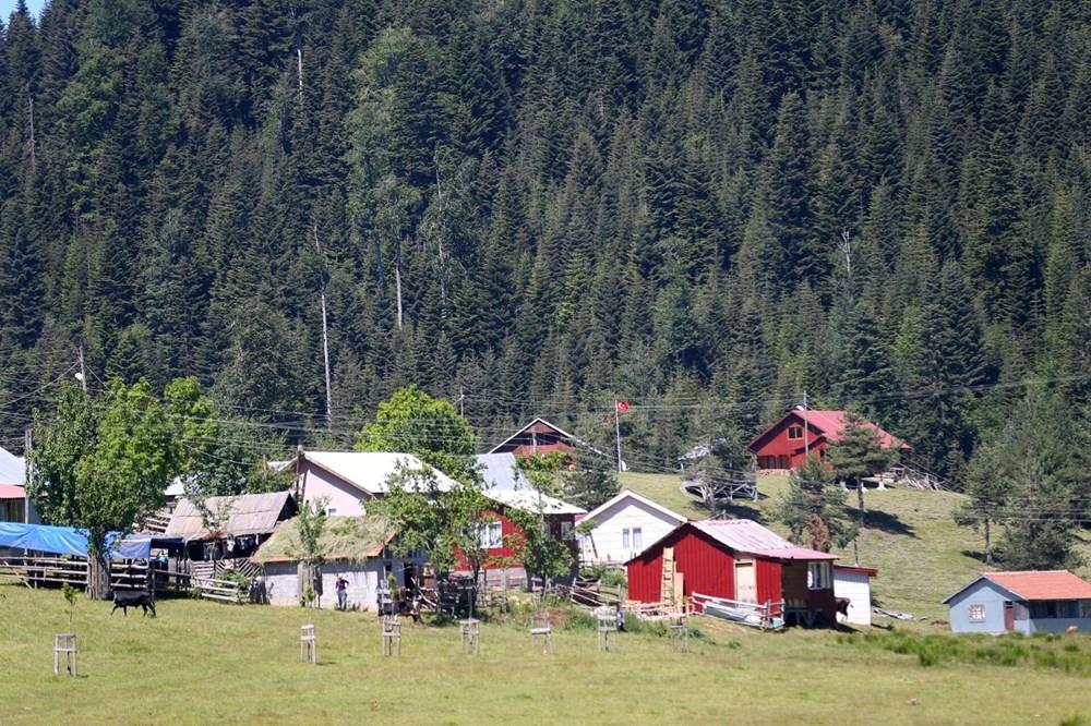 Doğa turizminin gözdesi Sakarya yaylaları - 25