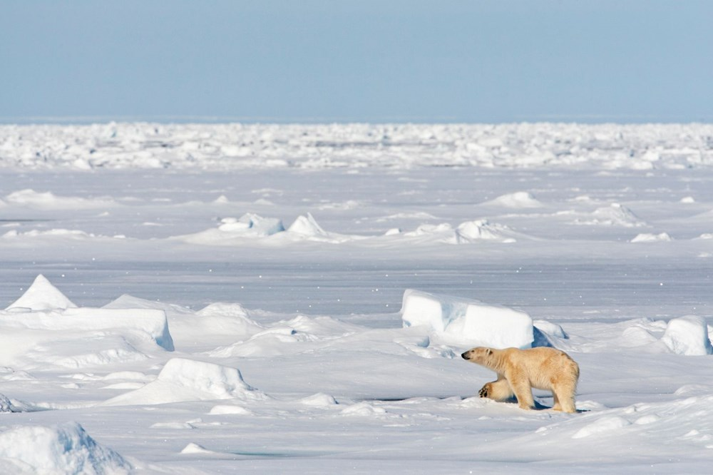 Arktik'teki büyük tehlike: Donmuş haldeki metan yatakları çözünmeye başladı - 3
