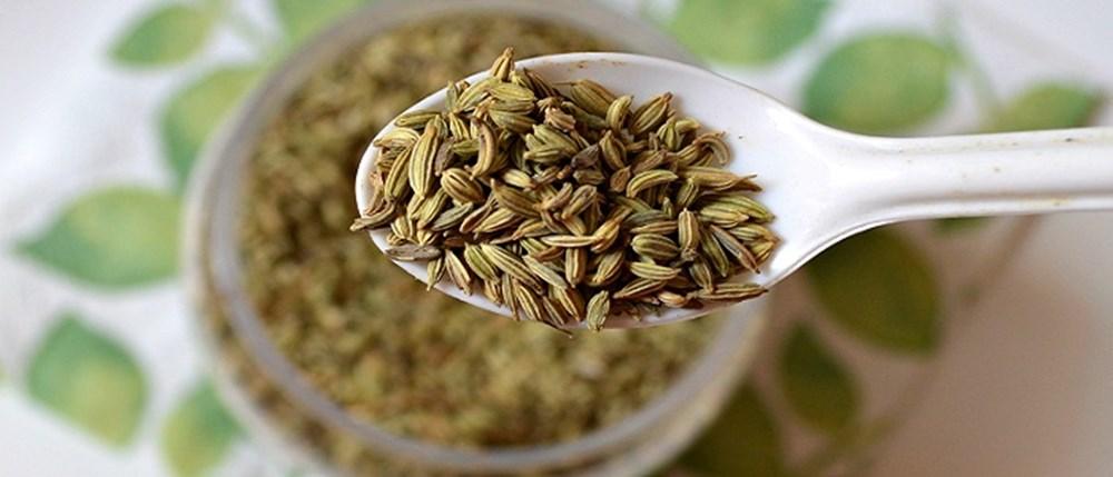 Bağışıklık sistemini güçlendiren besinler (50 sağlıklı besin) - 33
