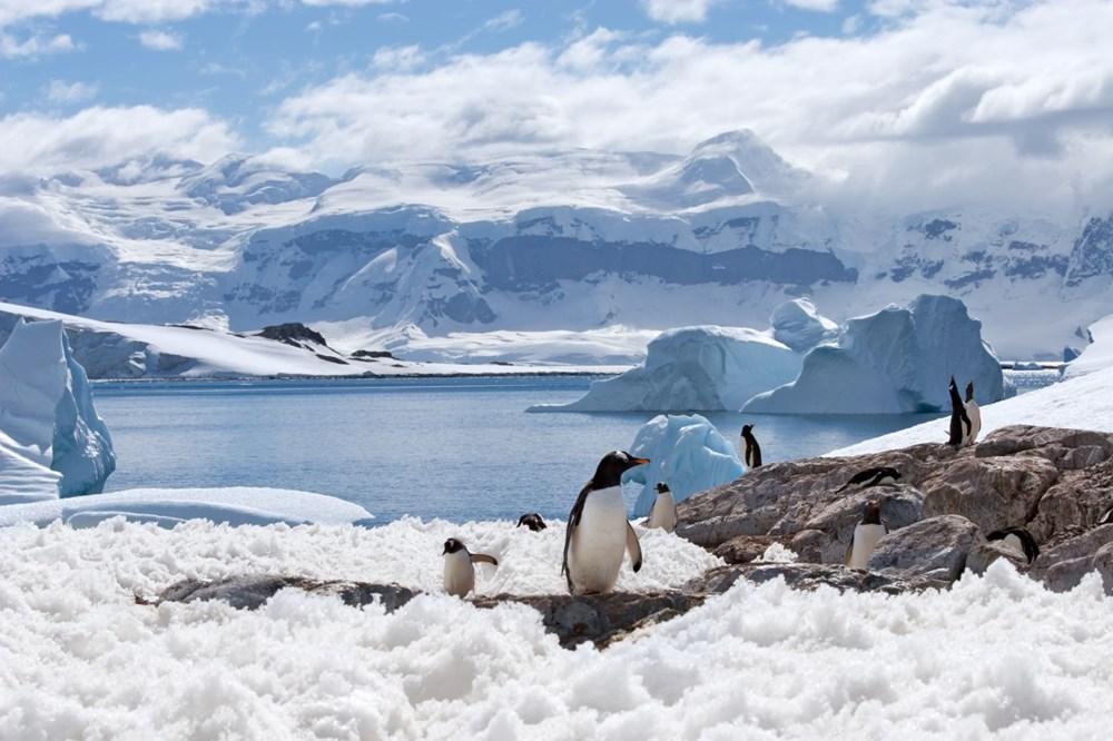 Dünyanın en büyük buzdağı Antarktika'dan koptu: Neredeyse İstanbul büyüklüğünde - 2