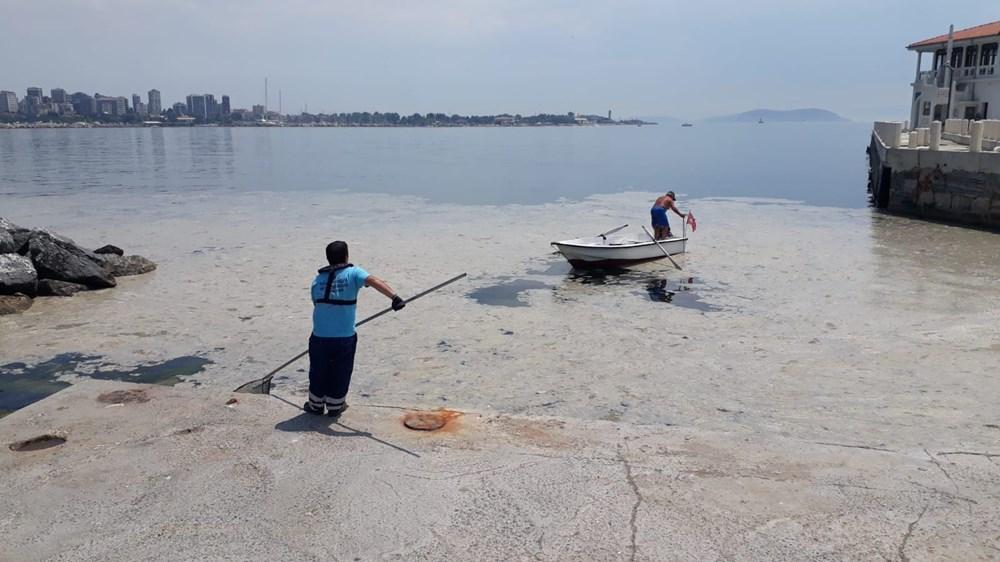İstanbul'un sahilleri müsilajla doldu: 95 yıldır böyle bir şey görmedim - 3