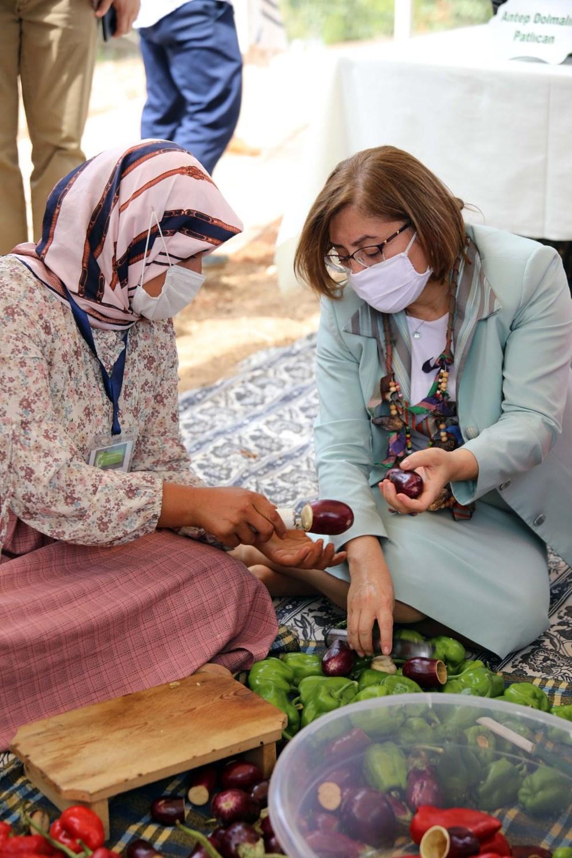 GastroAntep Festivali, fıstık hasadı ve şire yapımı ile başladı - 4