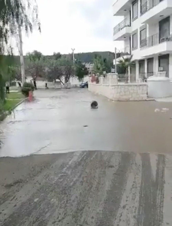 Seferihisar'da tsunami: Sokakları deniz suyu bastı - 4