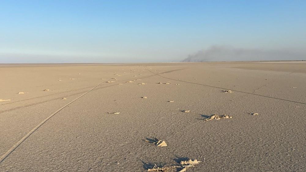 Tuz Gölü'nde toplu flamingo ölümleri: Soruşturma başlatıldı - 4