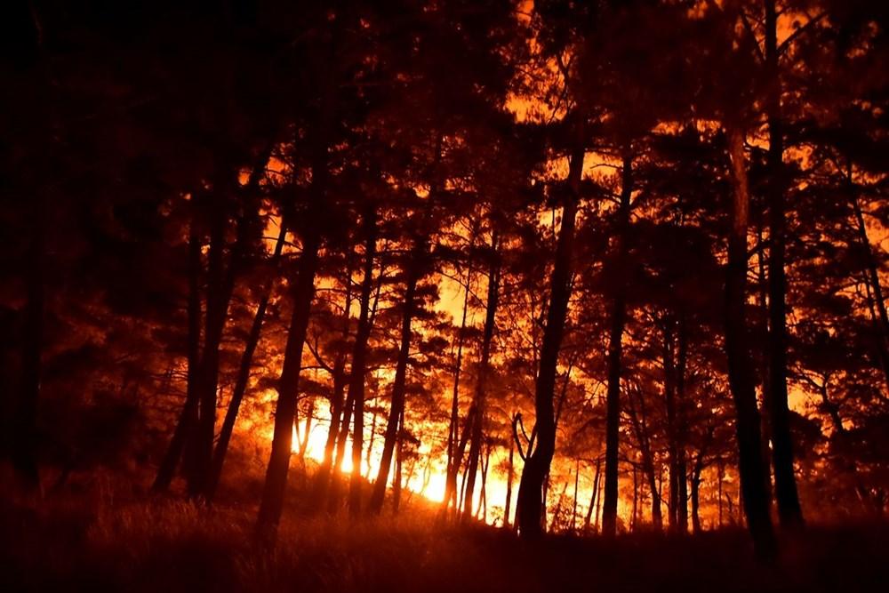 Hatay ve Mersin'de orman yangını - 6