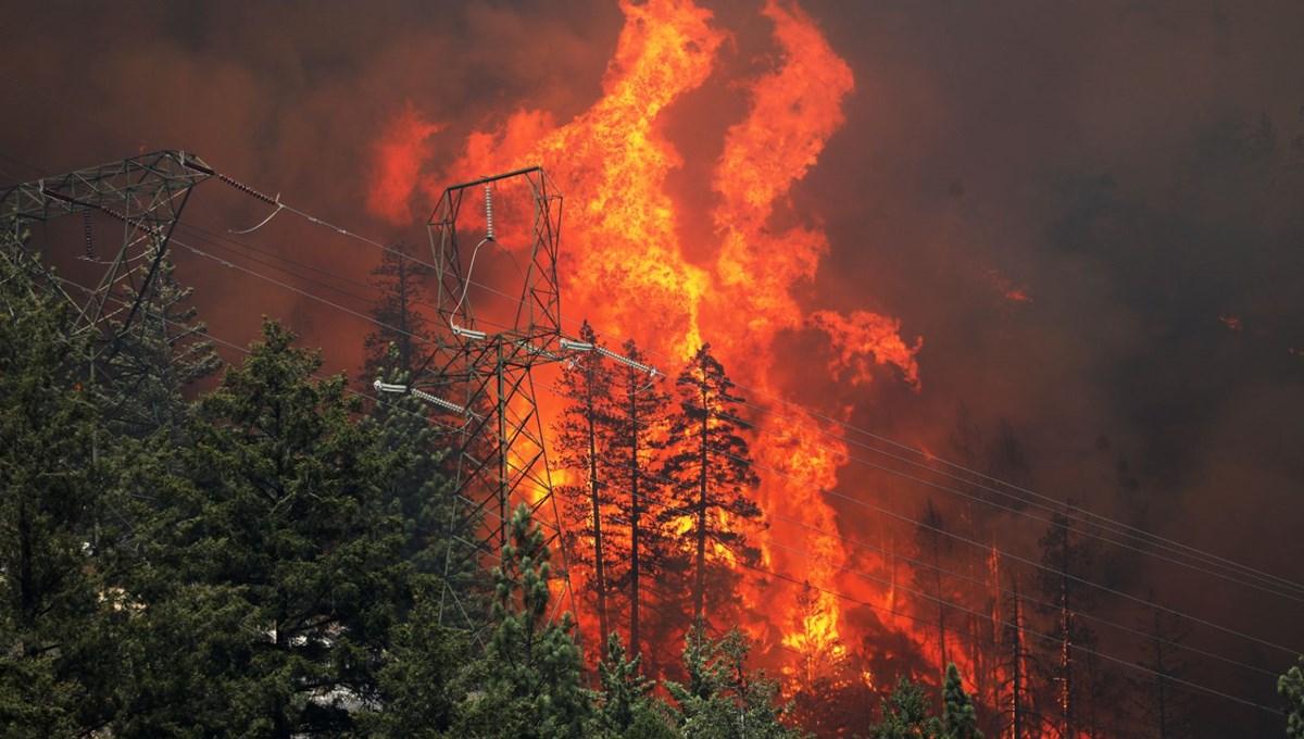 ABD'deki yangın 82 kilometreye yayıldı