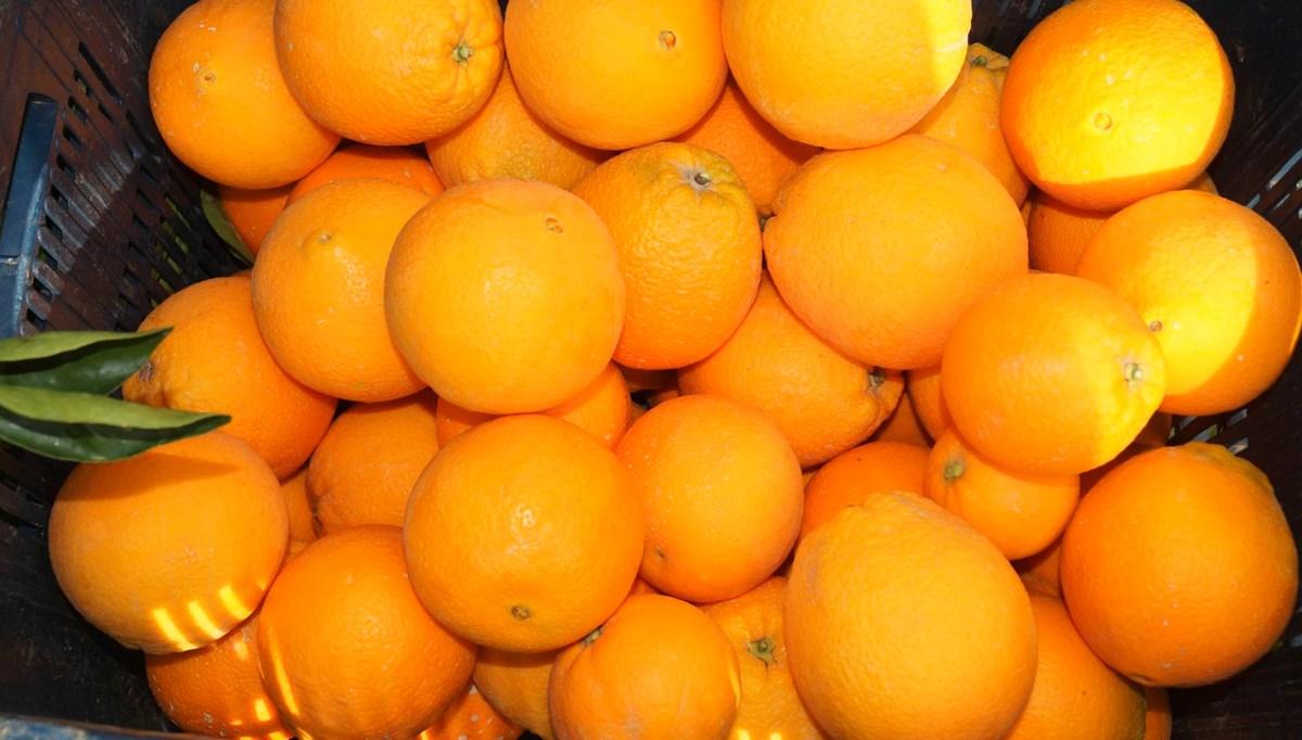 Salgın ve düşük rekolte portakalın fiyatını uçurdu: Dalında 4 lira