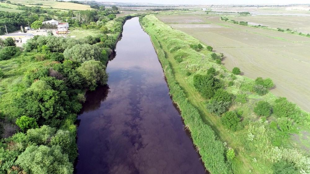 Ergene Nehri, Trakya'da zehir saçıyor - 5