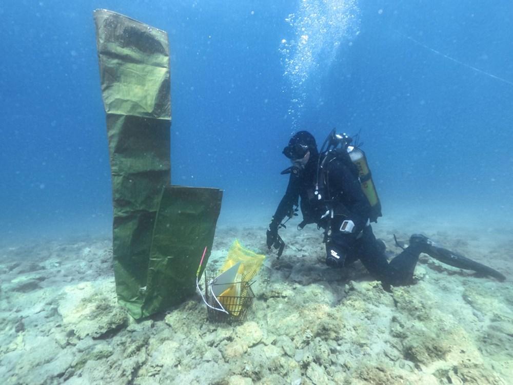 Hırvatistan kıyılarında 6 bin yıllık yerleşim alanı keşfedildi - 9
