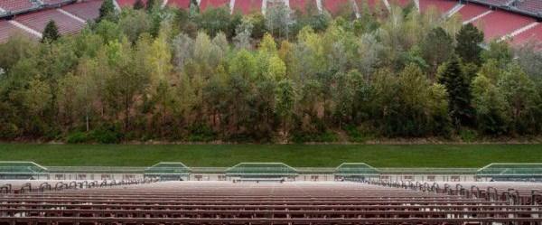 İklim değişikliğine dikkat çekmek için stada 300 ağaç
