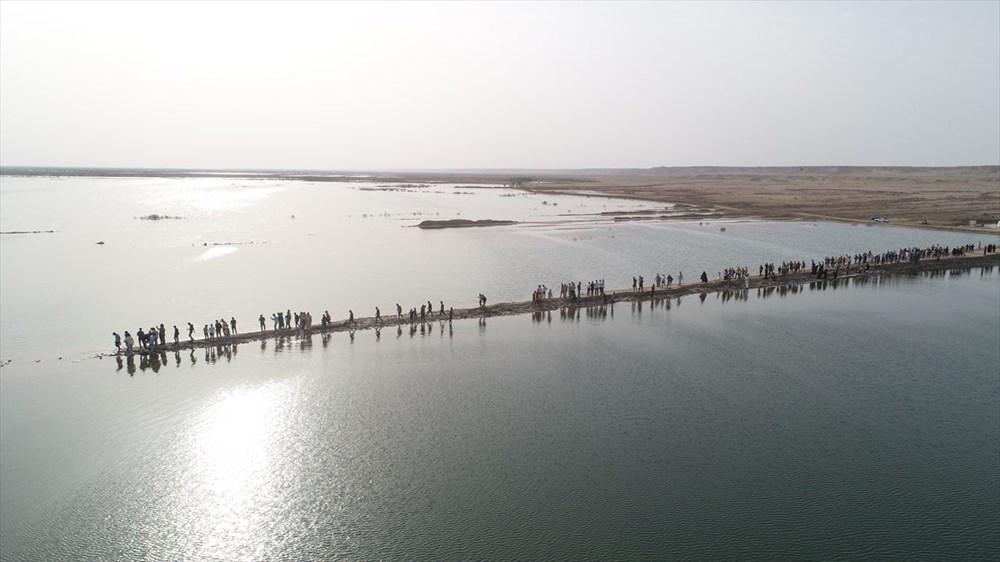 Necef Denizi: Kuraklığın ardından gelen mucize - 11