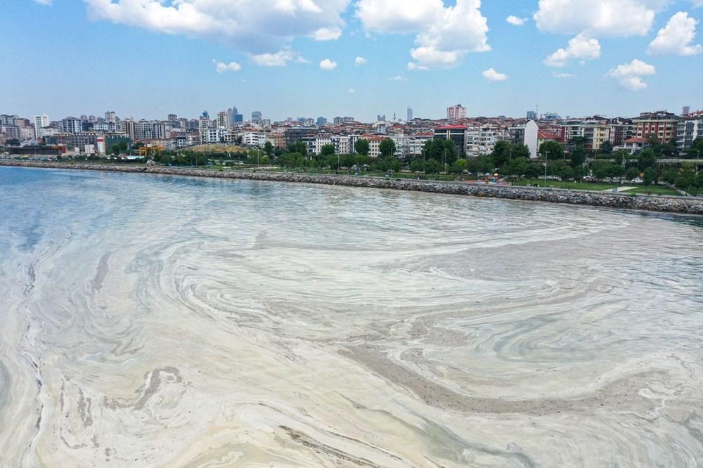 Marmara Denizi nasıl kurtulur? 3 aşamalı çözüm önerisi - 1