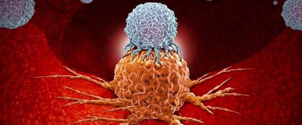 İmmünoterapi: Kanserle savaşan hücrelerin akıl hocası