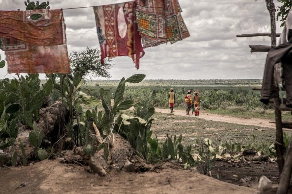 Tarihte sadece iklim krizinden kaynaklanan ilk kıtlık Madagaskar'ı kırıp geçiriyor - 5