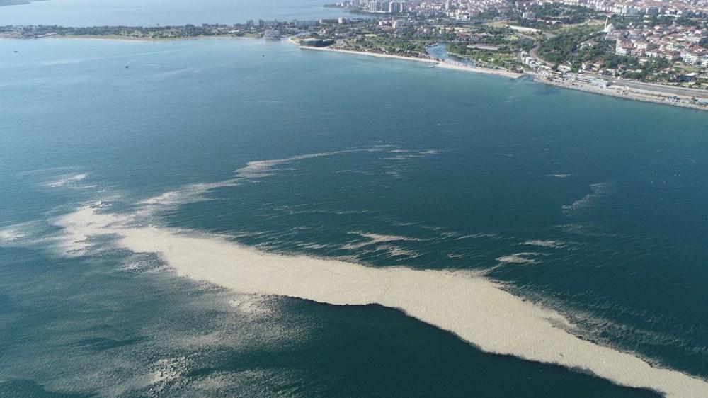 Küçükçekmece açıklarında 'müsilaj' adası - 2