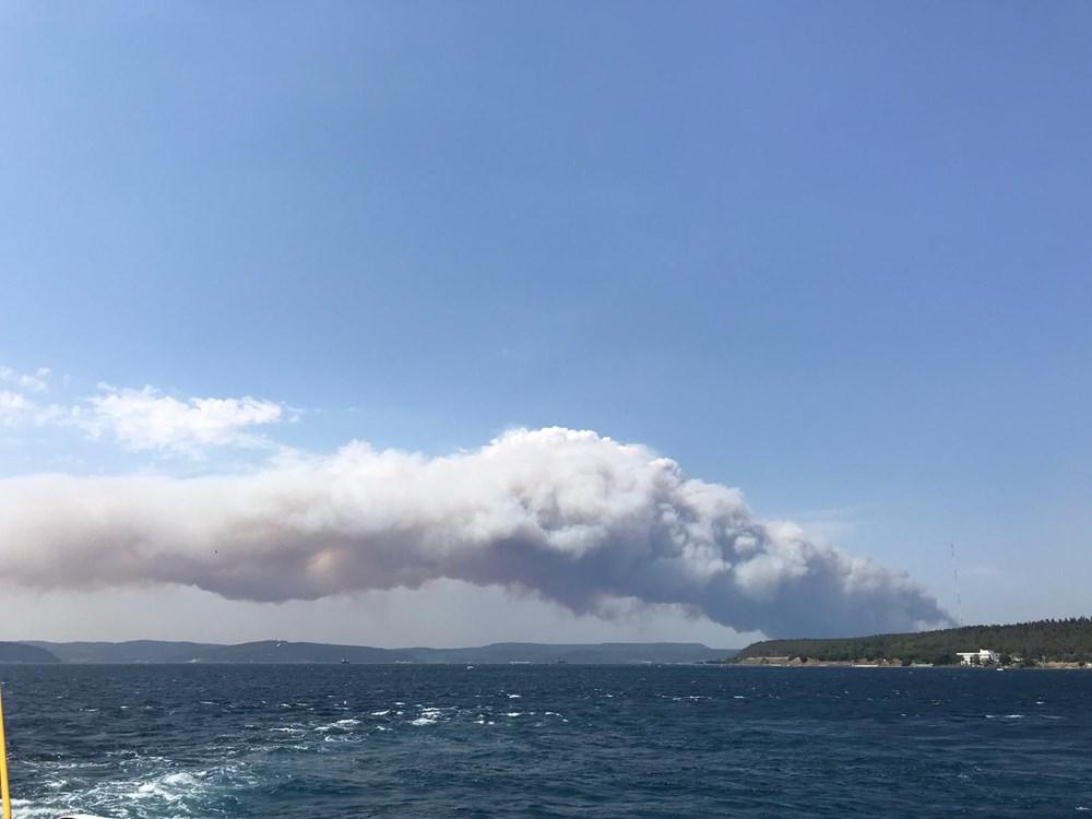 Gelibolu Yarımadası'nda orman yangınında son durum - 5
