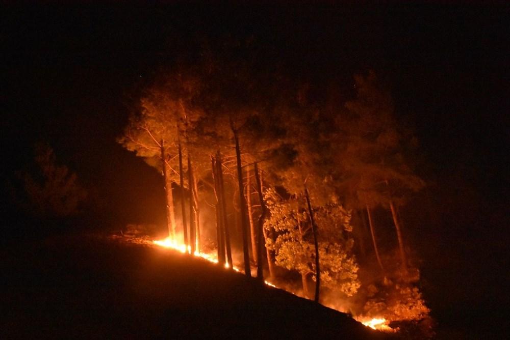 Antalya, Adana, Mersin,Muğla, Osmaniye ve Kayseri 'de orman yangınları - 16