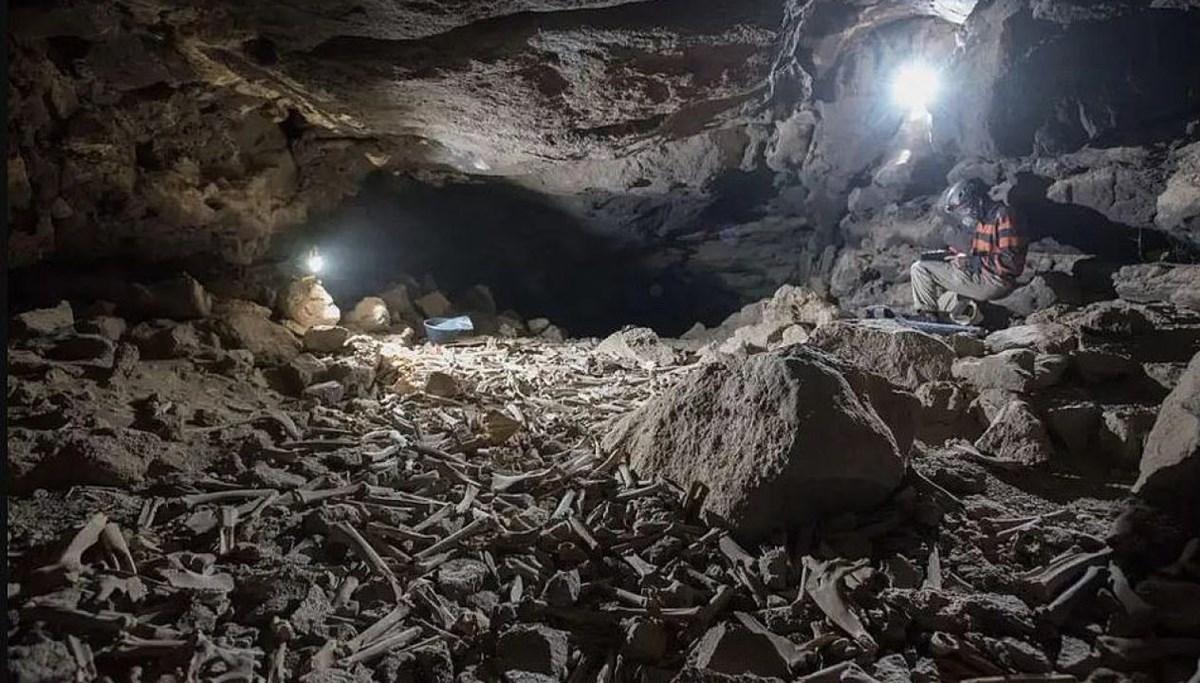 Araştırmacılar yıllarca korkudan giremedi: Mağarada bulunan on binlerce kemiğin gizemi çözüldü
