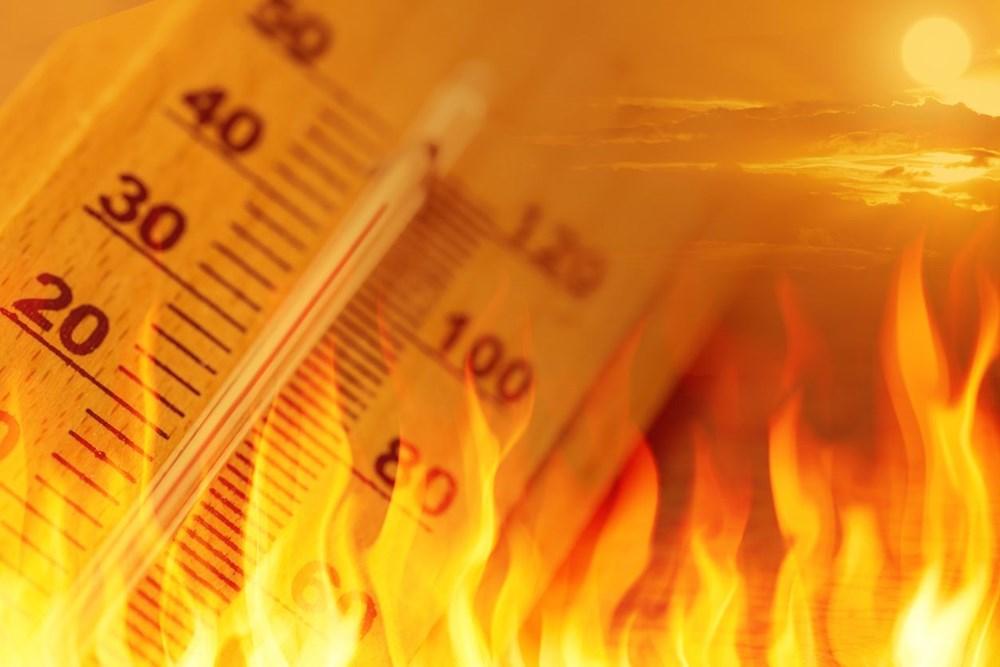 İklim krizi: 2020, Avrupa'nın açık ara en sıcak yılı oldu - 6