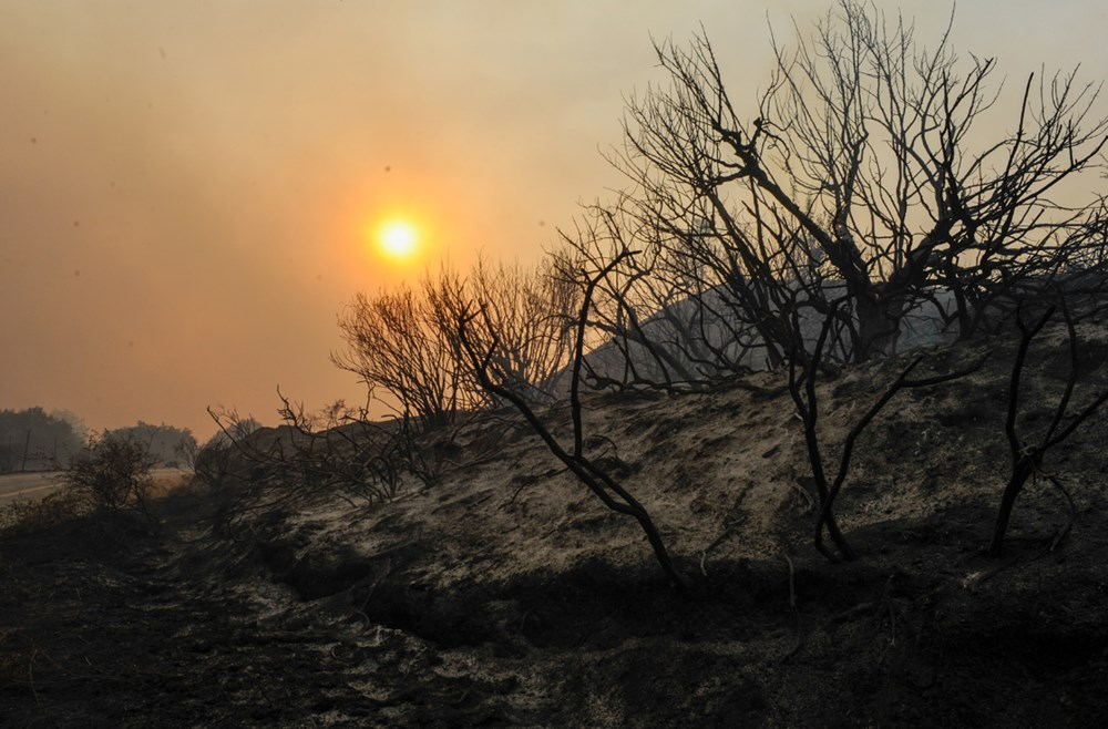 Akdeniz alev aldı: Yunanistan ve İtalya'da orman yangınları sürüyor - 8