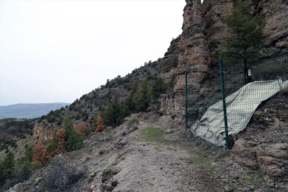 Türkiye'nin 'ilk' fosil ormanı UNESCO yolunda - 13