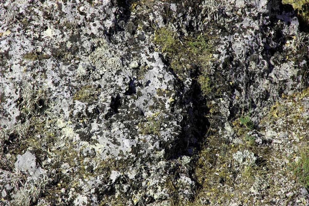 """Traklara ait tarihi kaya sunağında""""güneş diski"""" bulundu - 4"""