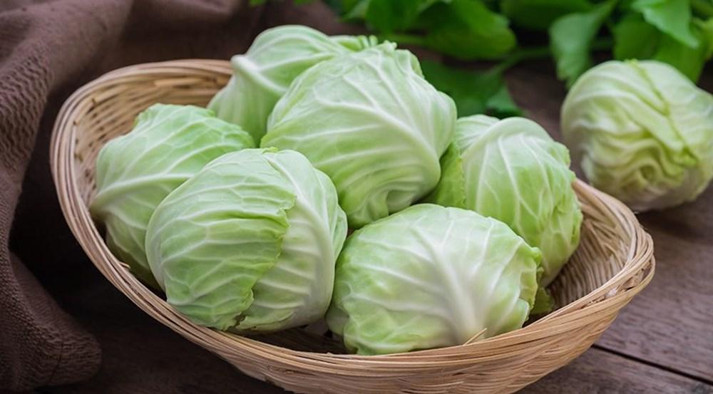 Bağışıklık sistemini güçlendiren besinler (50 sağlıklı besin) - 24
