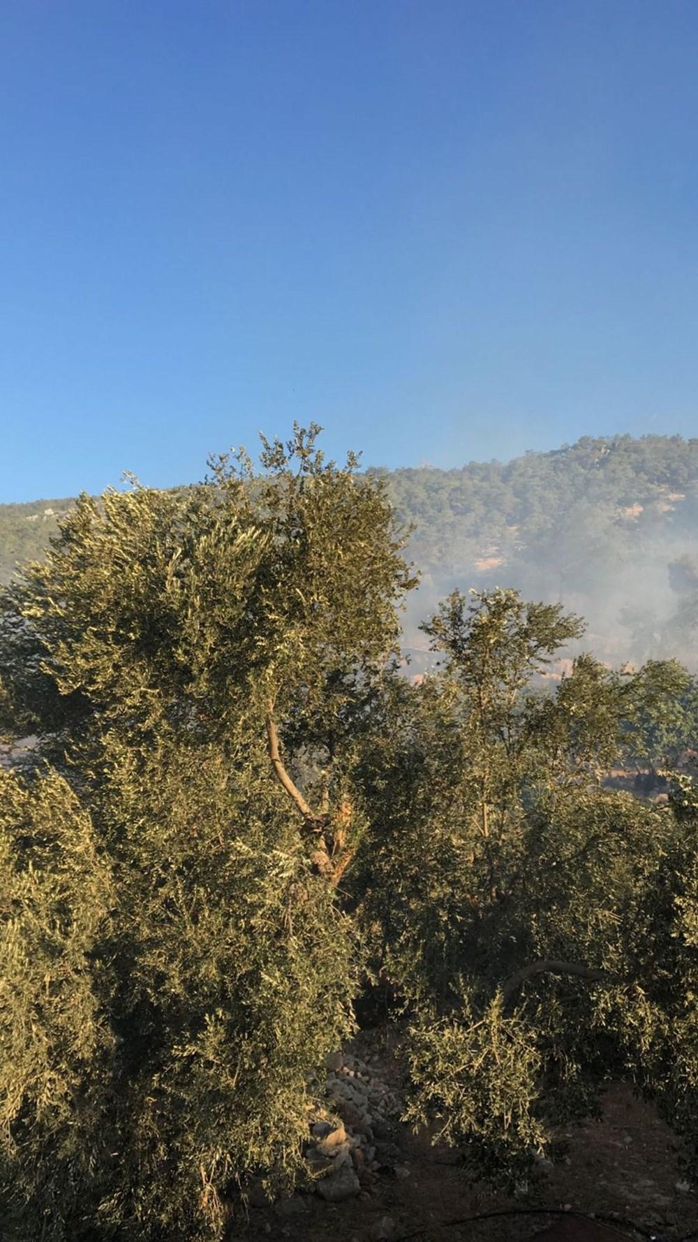 Antalya, Adana, Mersin, Aydın, Muğla, Osmaniye, Kayseri ve Manisa'da orman yangınları - 16