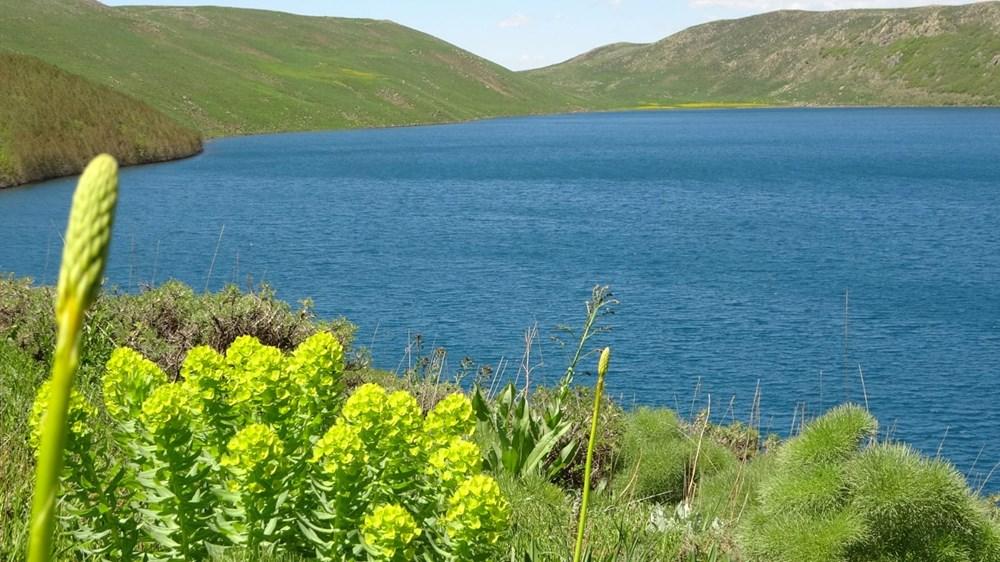 Muş'ta Hamurpet Gölleri görenleri doğasıyla mest ediyor - 15