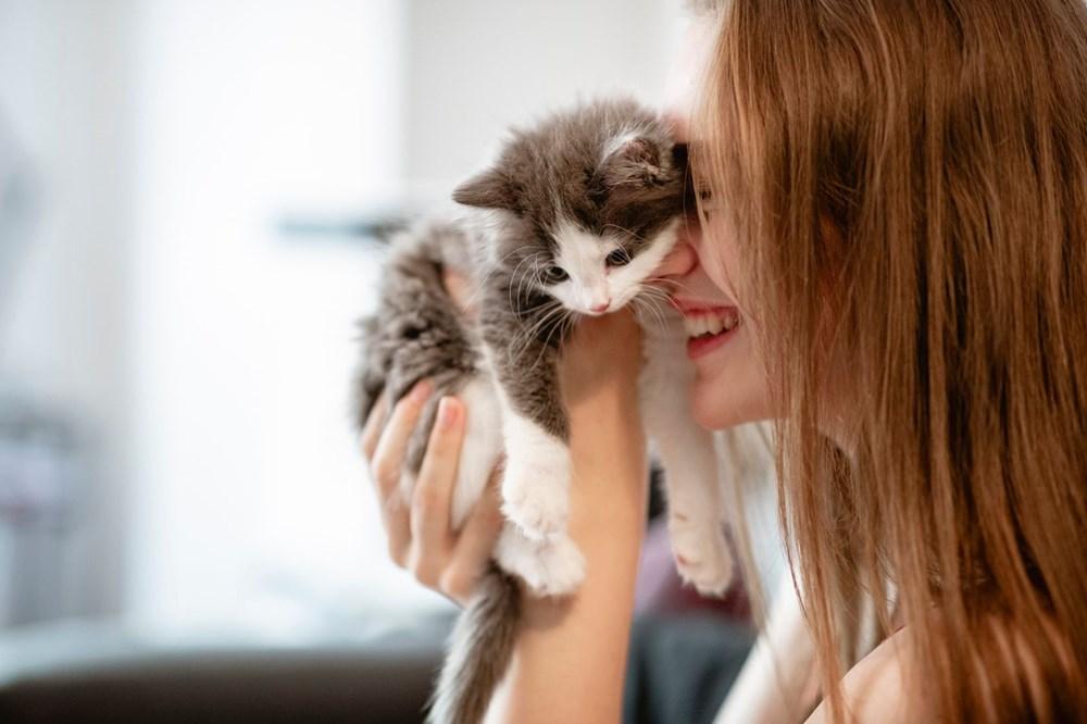 """Bilim insanları """"açık ilişki""""den """"eş bağımlılığa"""" kedilerle insanlar arasındaki 5 ilişki türünü ortaya koydu: Sizin kedilerle aranızda nasıl bir bağ var? - 6"""