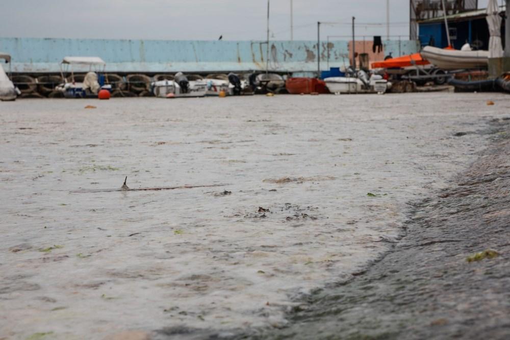 İstanbul'un sahilleri müsilajla doldu: 95 yıldır böyle bir şey görmedim - 19