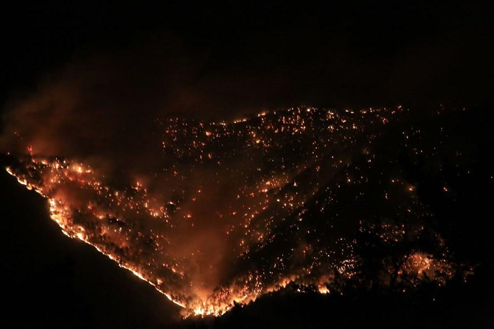 Antalya, Adana, Mersin, Aydın, Muğla, Osmaniye, Kayseri ve Manisa'da orman yangınları - 3