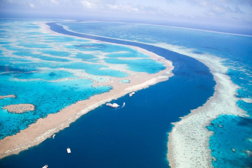 Büyük Set Resifi iklim değişikliği nedeniyle 2025'te yok olmaya başlayacak - 2