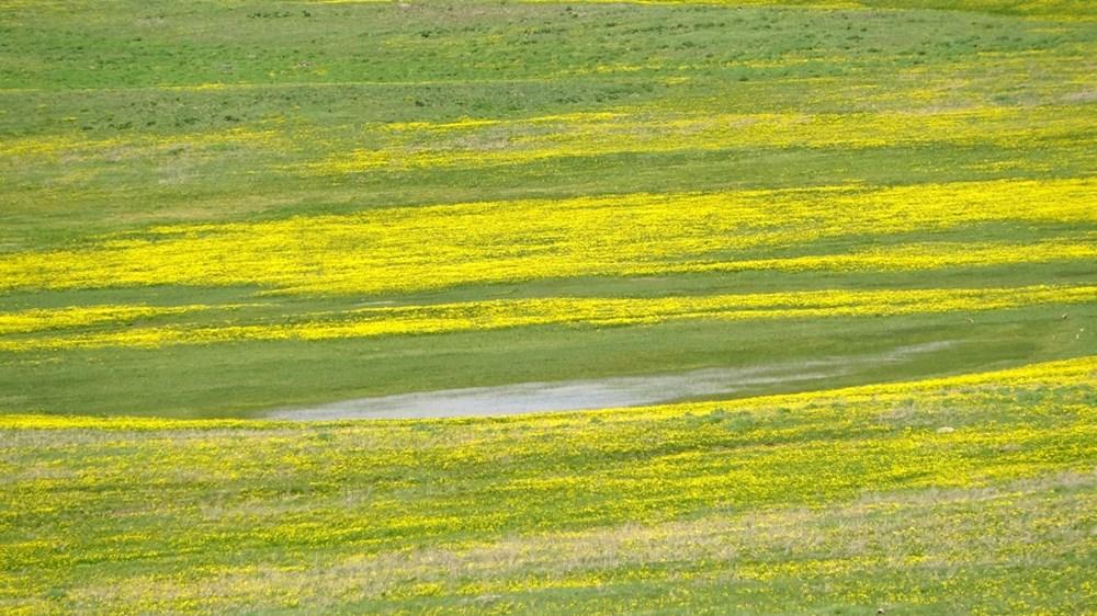Muş'ta Hamurpet Gölleri görenleri doğasıyla mest ediyor - 9
