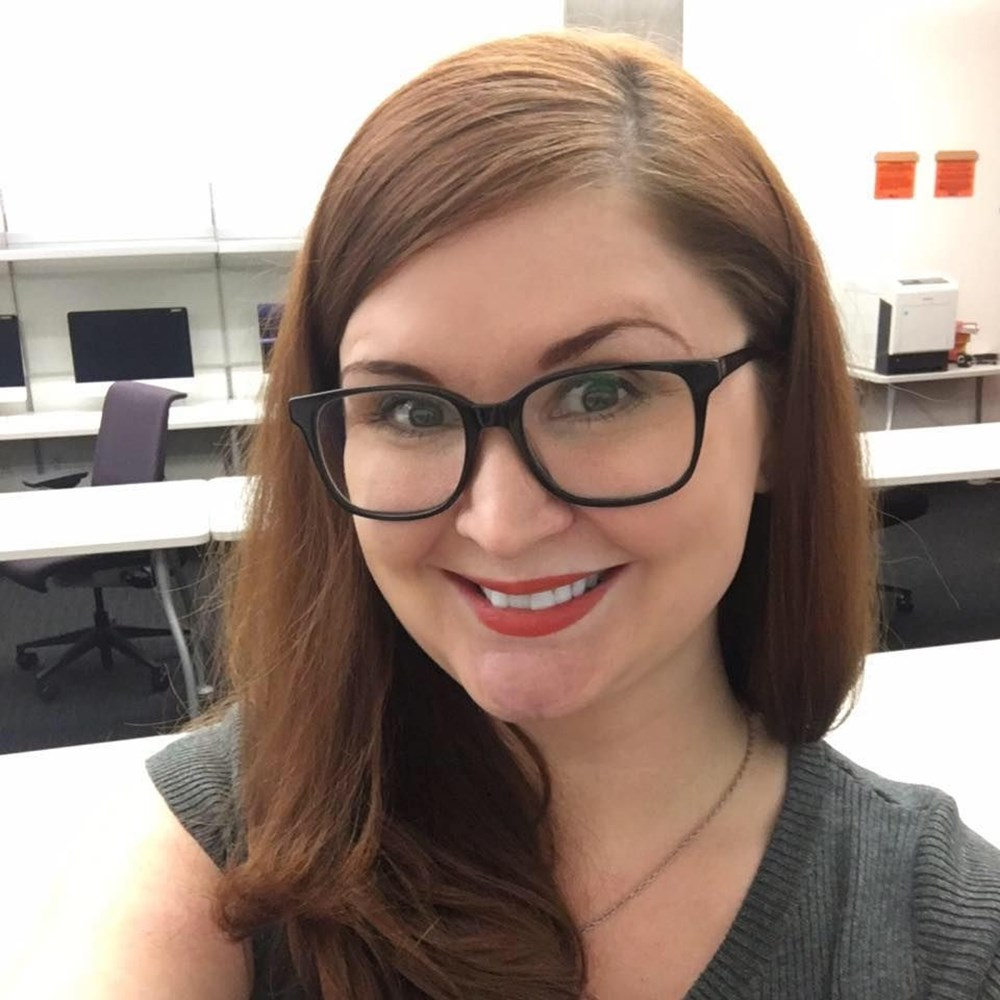 Yazar Shanna Hogan çocuğunun yanında geçirdiği kaza sonrası öldü - 3